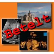 V. Nemzetközi Gyakorlati Ultrahang Tanfolyam - V. Nemzetközi GyakorlatiUltrahang Tanfolyam (2012. szeptember 13-15.) A létszám betelt! További jelentkezéseket nem áll módunkban elfogadni!